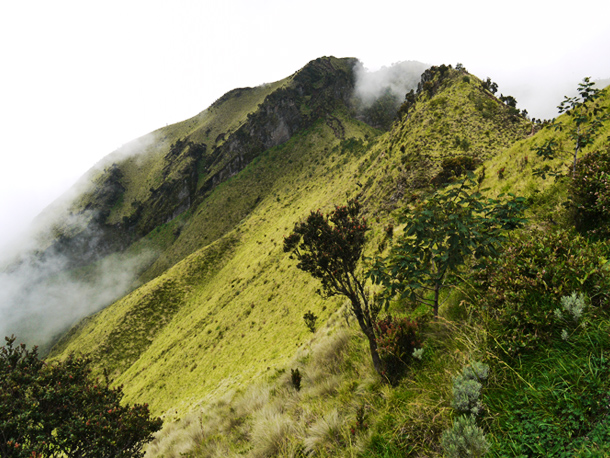 Merbabu - Peak view 2