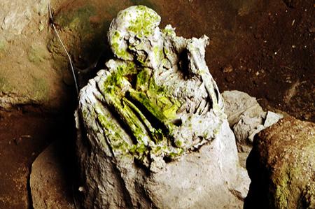 Fosil Manusia Pawon yang berada di dalam Goa Pawon, Citatah Bandung