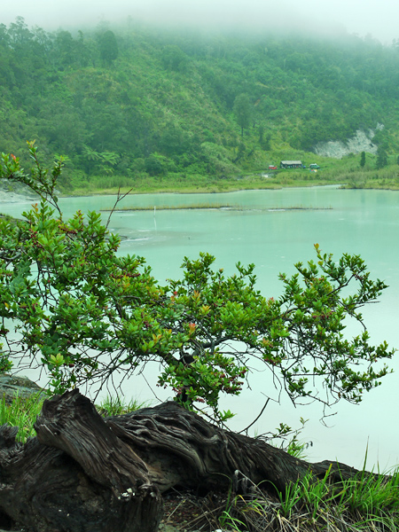 Telaga Bodas - Campsite View