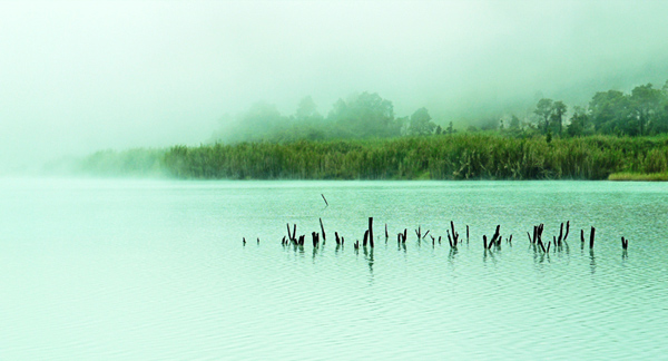 Telaga Bodas - Misty Lake