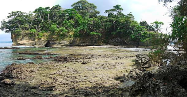 Karang Copong at Peucang Island