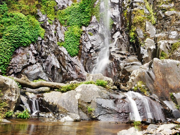 Curug Siliwangi's Pond