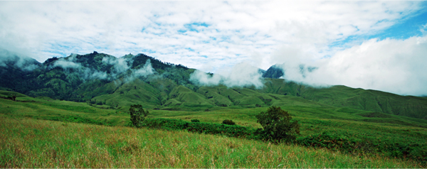 Rinjani National Park - Another View of Sembalun Savanah