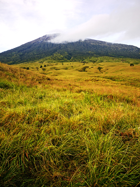 Rinjani National Park - Sembalun Savanah