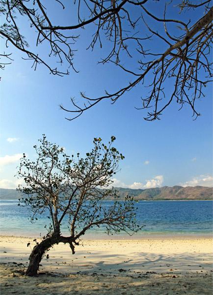 Pantai Pulau Gili Nanggu