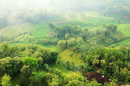 Pemandangan Dusun Timoyo dari puncak Gunung Sintren