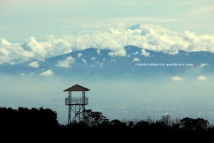 Gunung Papandayan 03