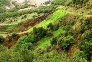 Gunung Papandayan 24
