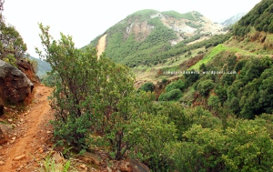 Gunung Papandayan 25