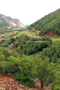 Gunung Papandayan 26