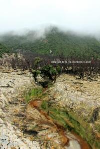 Gunung Papandayan 41