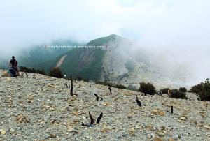 Gunung Papandayan 46