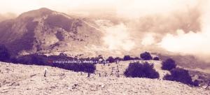Gunung Papandayan 48
