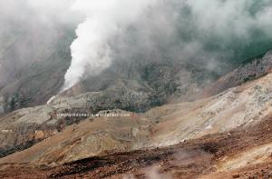 Gunung Papandayan 51