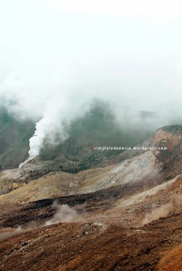 Gunung Papandayan 52