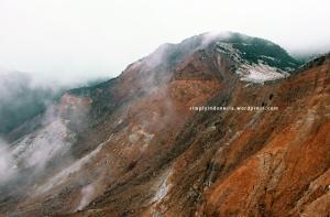 Gunung Papandayan 53