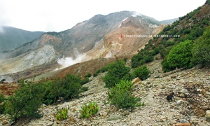 Gunung Papandayan 56