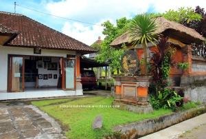 Gallery Rare Angon Milik Pak Wayan Mudiana