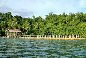 Dermaga Waiwo Dive Resort 1