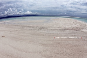 Pulau Pasir Timbul 1