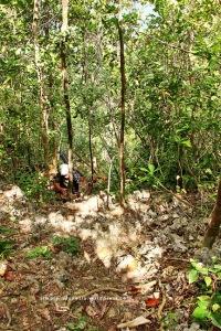 Trek Menuju Puncak Wayag Satu 03
