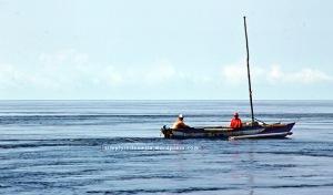 Nelayan Di Sekitar Pulau Arborek