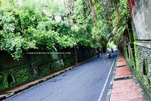 Jalan Campuhan, Ubud