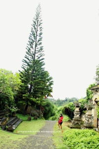 Ujung Utara Bukit Campuhan (Villa Lembah Giri)