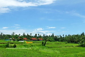 Pemandangan Desa Bangkiang Sidem, Ubud 1