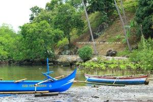 Kawasan Konservasi Mangrove Desa Pulau Pahawang 2