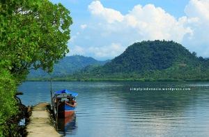 Di sekitar Kawasan Konservasi Mangrove Desa Pulau Pahawang