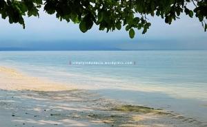 Pantai Pasir Pulau Pahawang 3