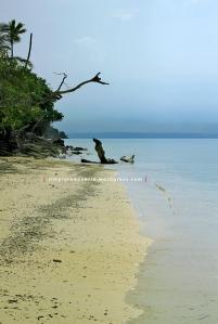 Pantai Pasir Pulau Pahawang 4