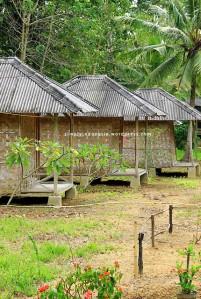 Penginapan Mitra Bentala, Pahawang