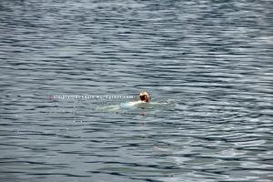 Berenang Di Danau 2