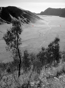 View Kaldera Tengger dari Bantengan 1