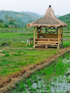Saung salah satu penginapan di Desa Sawarna