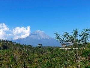 View Gunung Semeru dari Dampit
