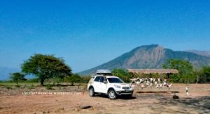 Daihatsu Terios di Taman Nasional Baluran
