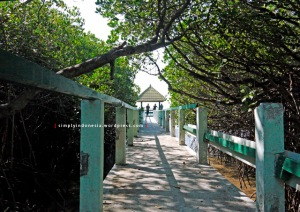 Jembatan Mangrove di taman nasional baluran