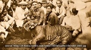 Harimau Jawa, Priangan Bandung Selatan, tahun 1920