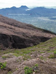 Kondisi di sekitar trek punggungan puncak