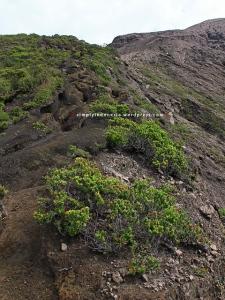 Kondisi jalur menuju puncak Gunung Kerinci 1