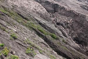 Kondisi jalur menuju puncak Gunung Kerinci 2