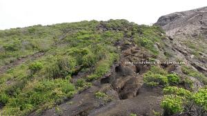 Kondisi jalur menuju puncak Gunung Kerinci 3