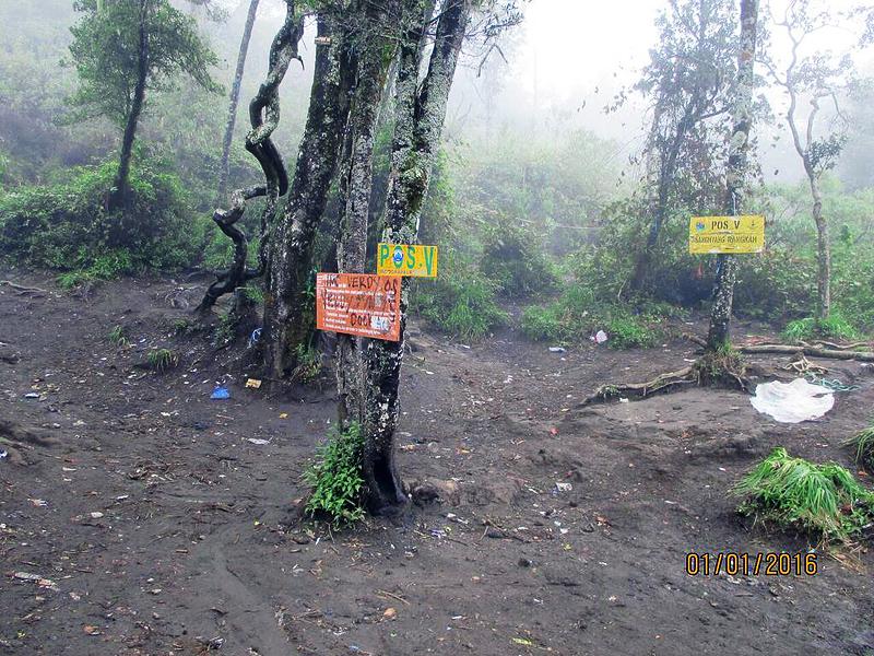 Pendakian Gunung Ciremai Via Jalur Apuy | simplyindonesia